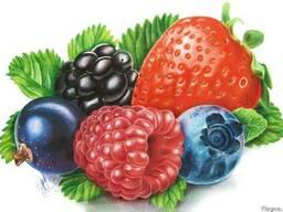 Boabe, legume, fructe din Ucraina.
