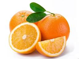 Апельсины ОПТОМ из Турции