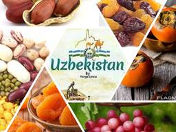 Dried fruits from Uzbekistan