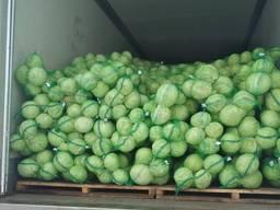 Egume en-gros Овощи оптом.