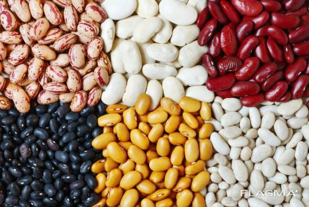 Fasole, semințe de in, linte, naut, mazăre și alte produse agricole.