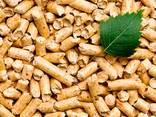 Fuel pellets - фото 1