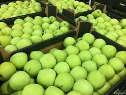Polish apples, La-Sad - фото 5