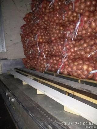 Продаем лук из Узбекистана