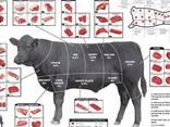 Продам говядину на экспорт - photo 1
