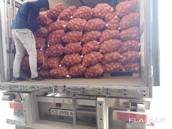 Продам картофель оптом Казахстан