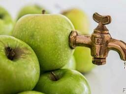 Сок концентрированный яблочный.