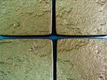 Oferim matrițe termo-poliuretanice (TPU) nu numai pentru pia - photo 2